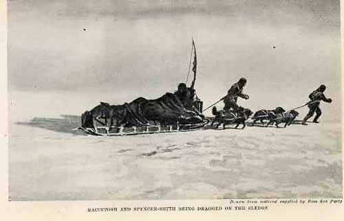 "Mackintosh and Spencer-Smith on the sledge; ""Image was ""drawn and painted, probably by George Marshall, from material supplied to the artist by surviving members of the Ross Sea Party."" (Wikipedia)"
