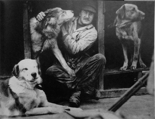 dogs_macklin